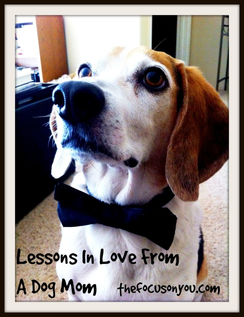 Lessons In Love From A Dog Mom