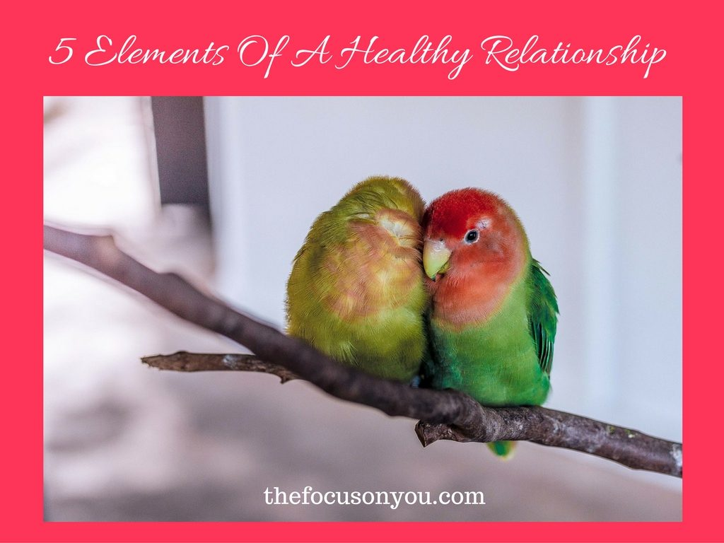 5 Elements Of A Healthy Relationship
